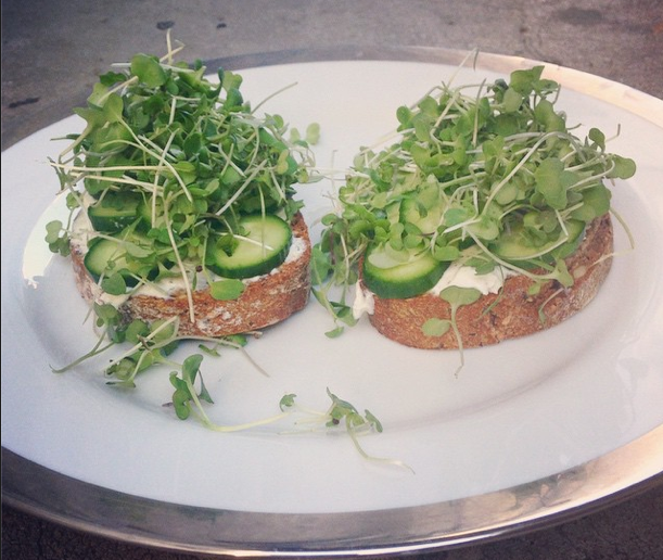 Sprouted avocado toast
