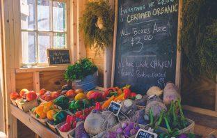 Certified Organic Farming