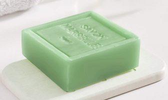 Diatomite soap dish