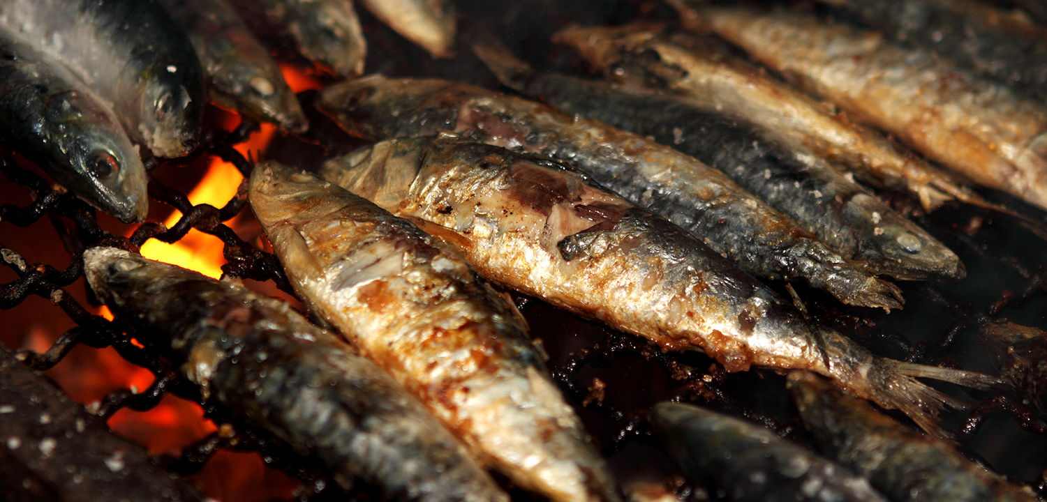 Wild caught vs farmed fish which is the healthier and for Farmed fish vs wild
