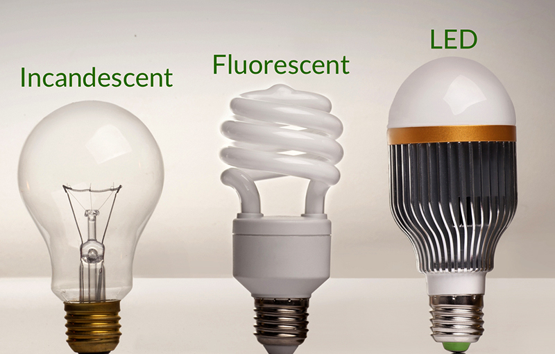 Incandescent, Fluorescent & LED bulb