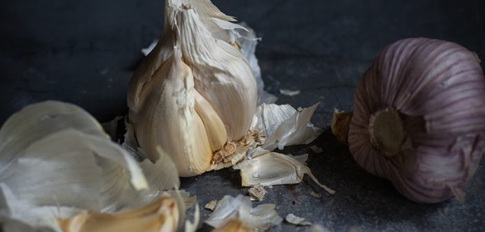 Prebiotic Garlic