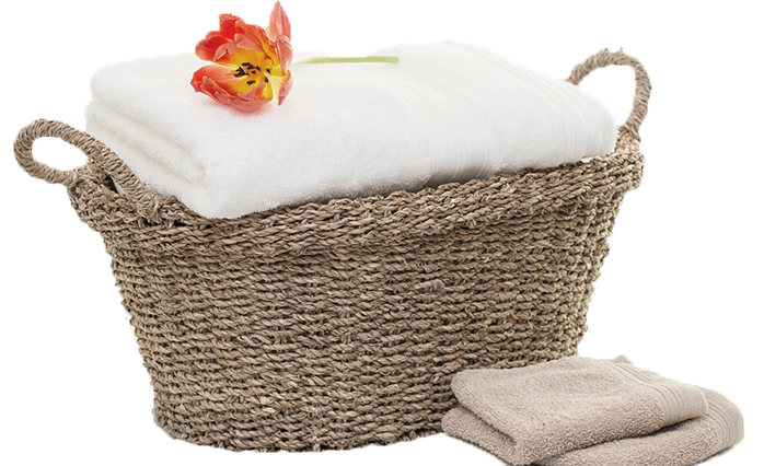 NonToxic Laundry Alternatives