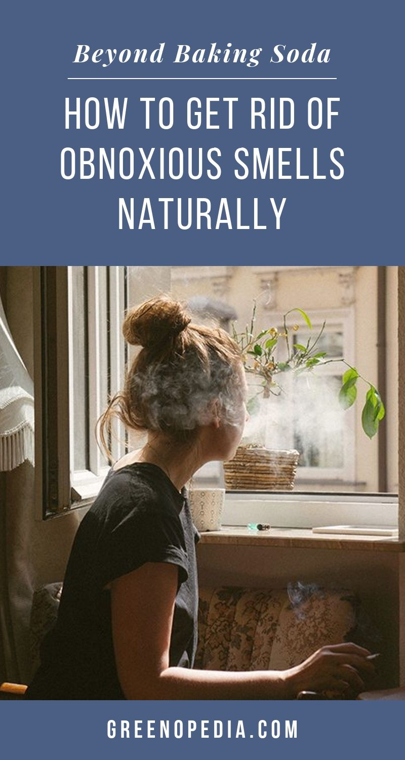 Beyond Baking Soda - Natural Solutions to Tackle Strong Smells that Invade Your Home | Baking soda, activated charcoal & zeolite can handle most household odors. For extra strong chemical smells, you need a HEPA filter or mineral technology. | Greenopedia #chemicalsmells #chemicalodors #chemicalsmells #toxicsmells #removesmells #malodors via @greenopedia