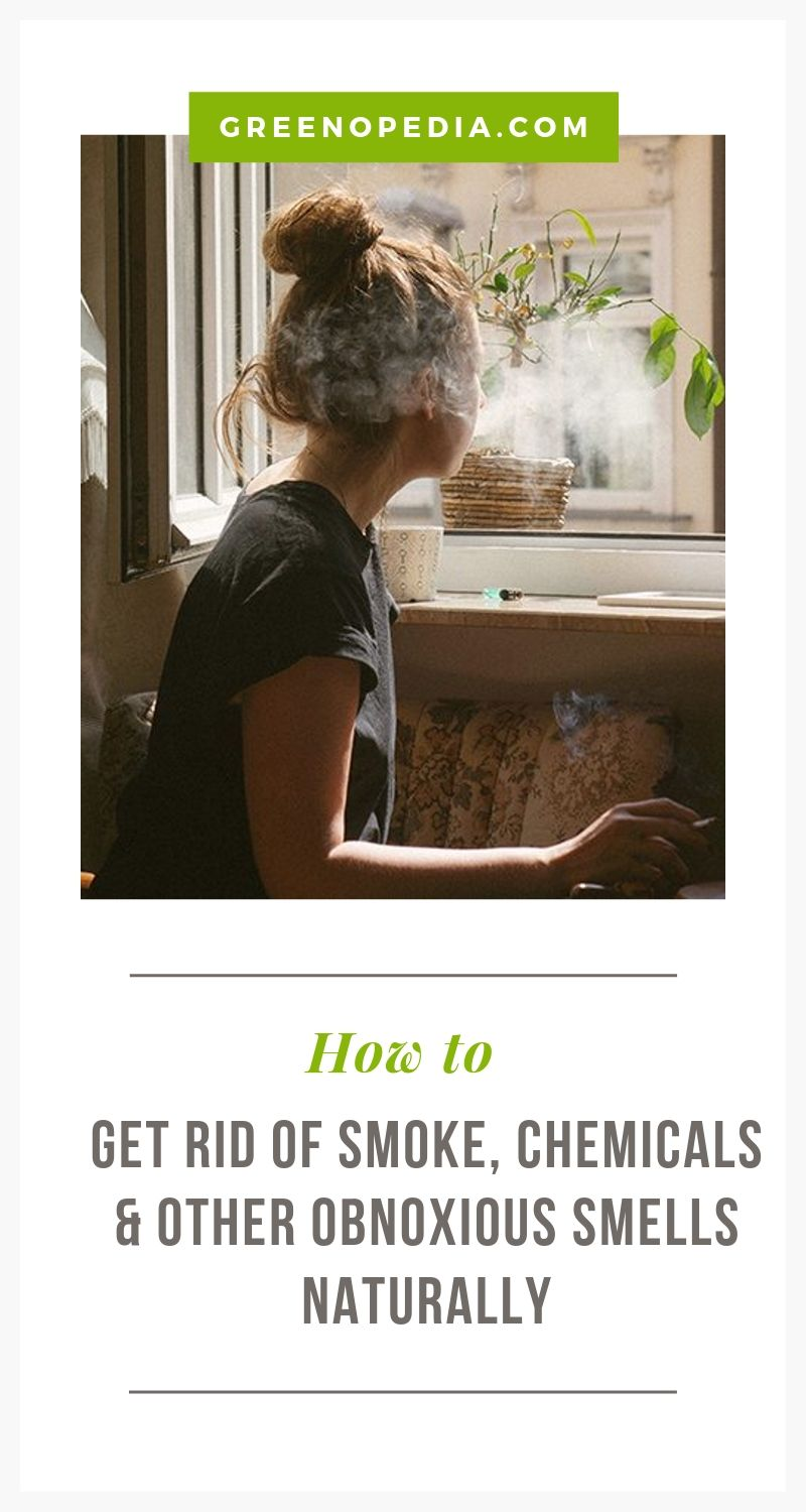 Beyond Baking Soda - Natural Solutions to Tackle Strong Smells that Invade Your Home   Baking soda, activated charcoal & zeolite can handle most household odors. For extra strong chemical smells, you need a HEPA filter or mineral technology.   Greenopedia #chemicalsmells #chemicalodors #chemicalsmells #toxicsmells #removesmells #malodors via @greenopedia