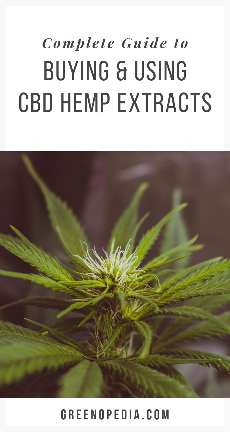 The Ultimate Guide for Buying and Using CBD via @greenopedia