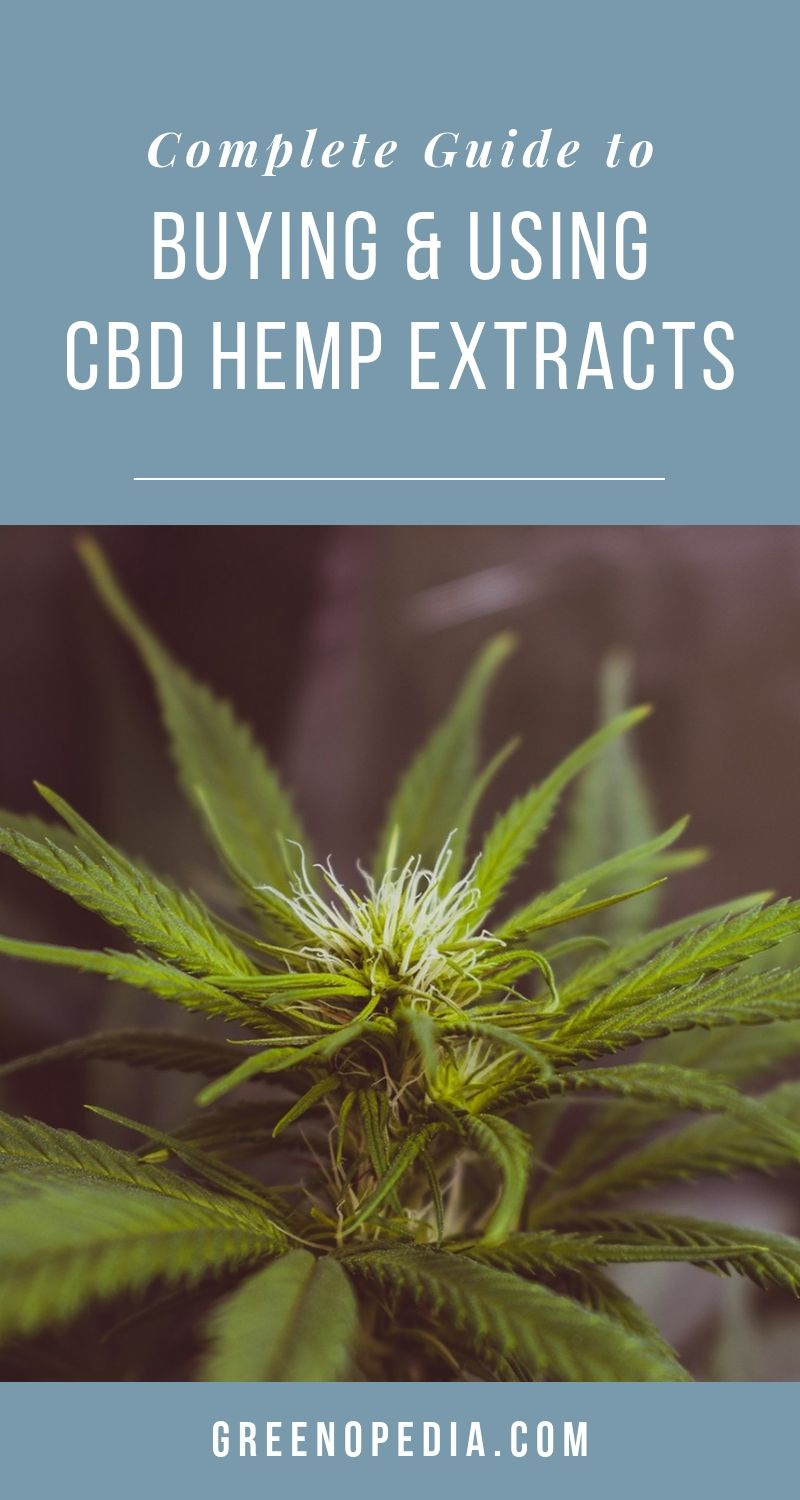 The Ultimate Guide for Buying and Using CBD | How is CBD different from THC? How much should I take? Do trendy CBD-infused products offer any benefit? How do cannabinoids benefit my body and mind? | Greenopedia #CBD via @greenopedia