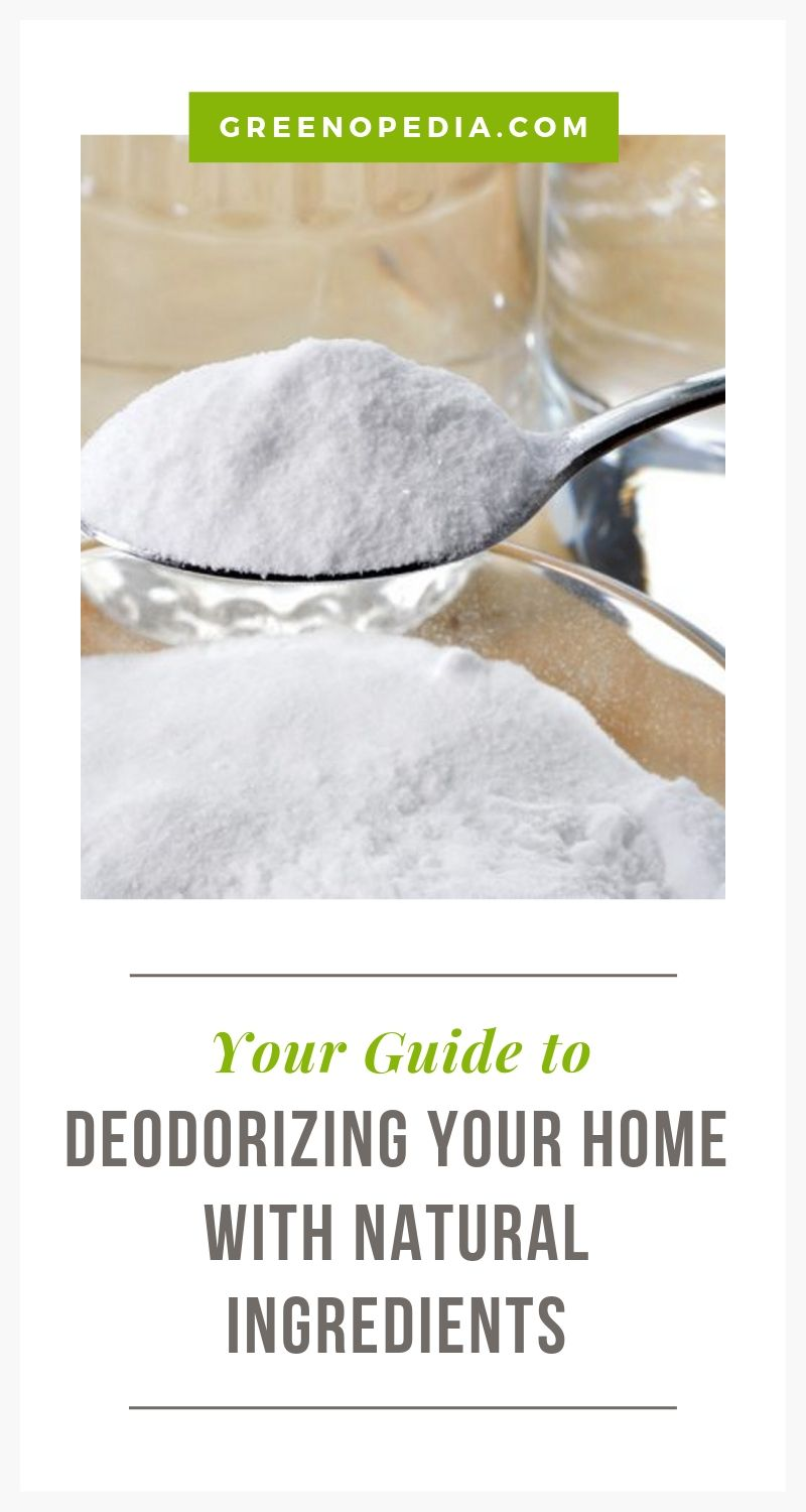 Natural Home Deodorizers That Work Better | While most chemical deodorizers only cover odors temporarily, baking soda and vinegar get rid of them for good. Here's how to use them. (It's so easy!) | Greenopedia #naturaldeodorizers #naturalcleaners via @greenopedia