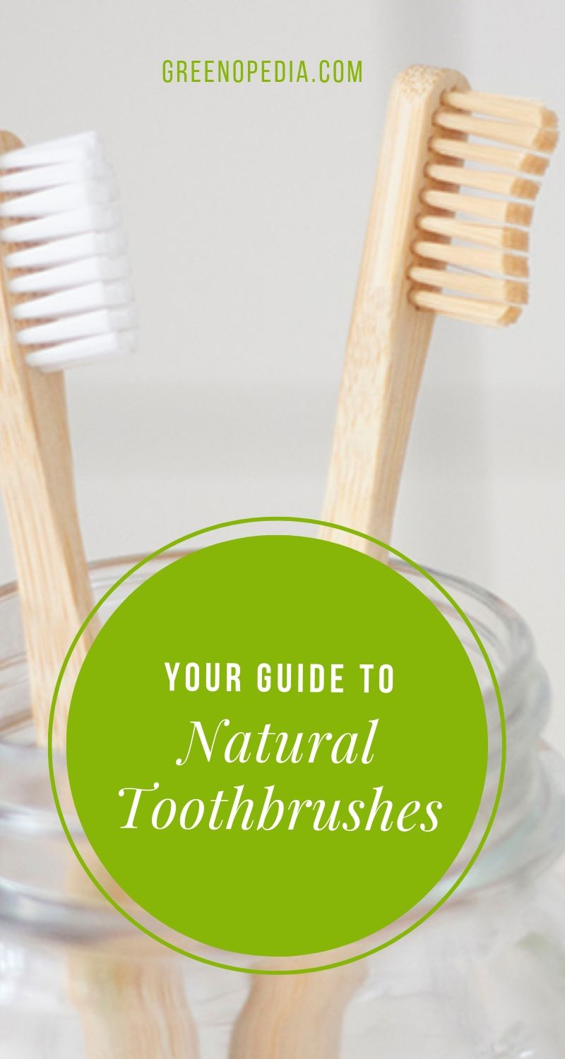 Natural Alternatives to Plastic Toothbrushes - And Why You Should Make the Switch | I switched to a natural toothbrush after reading horror stories about chemically sensitive folks whose mouths were literally burned by a plastic toothbrush. | Greenopedia #naturaltoothbrush #naturaltoothbrushalternatives #plastictoothbrush #bambootoothbrush via @greenopedia