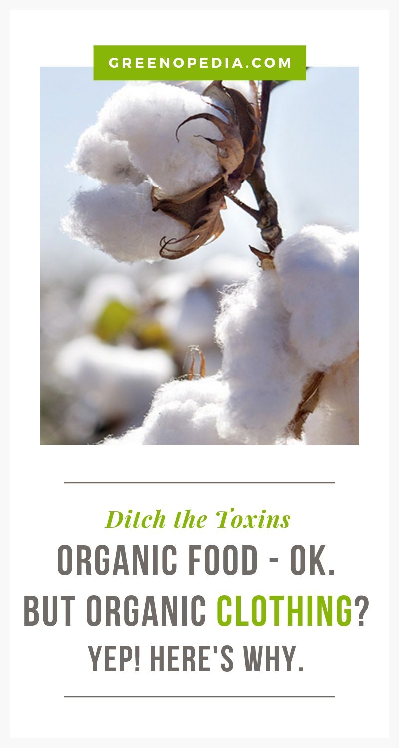 What You Really Get When You Buy Organic Clothing and Linens   Cotton, hemp, linen & other natural textiles certified (or manufactured) to organic standards are healthier for us & our environment. Here's what it means.   Greenopedia #organictextiles via @greenopedia