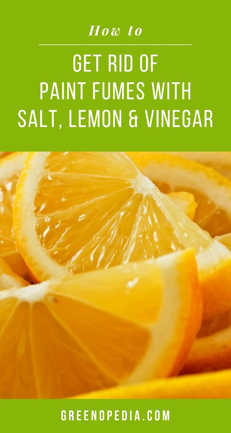 Get Rid of Strong Paint Fumes with Salt, Lemon, and Vinegar | Salt, lemon, and vinegar all have the power to soak up strong paint smells. Use them separately or together to get rid of the stink. Here's how. | Greenopedia #getridofpaintfumes #paintfumes via @greenopedia