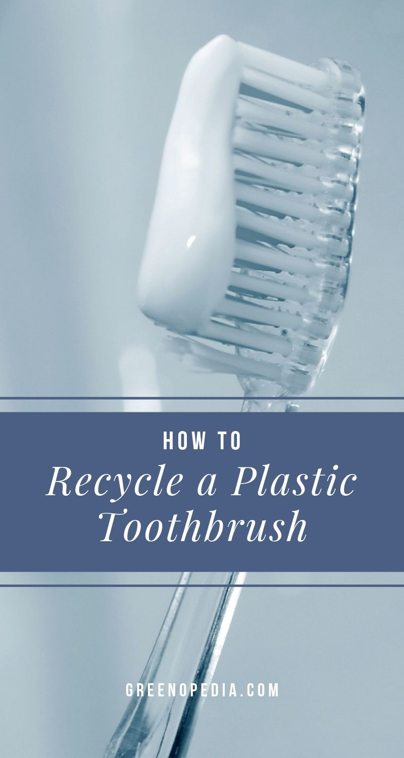 How to Recycle a Plastic Toothbrush | There's a trick to recycling toothbrushes, because the handle and bristles are made from two different plastics, each with a different recycling code. | Greenopedia #recycleplastictoothbrush #recycleyourtoothbrush via @greenopedia