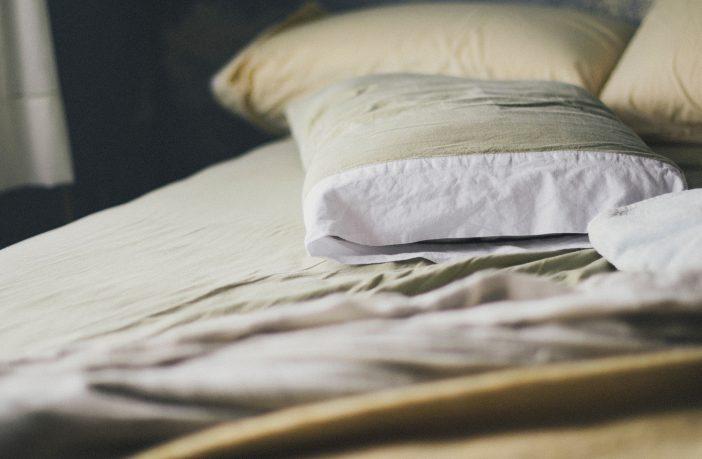 Replace Pillow Natural Alternatives