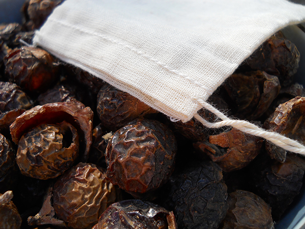 Soap Nuts / Soap Berries