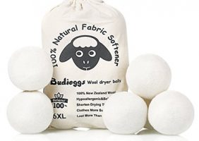 Wool Dryer Balls Budieggs