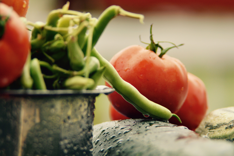 Alkaline Acid Food Charts Greenopedia